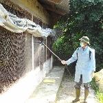 Kỹ thuật sát trùng chuồng trại và dụng cụ chăn nuôi