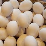 5.000 đồng 10 quả trứng vịt ở Đồng Tháp