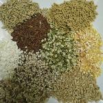 Phương pháp tính giá trị năng lượng trao đổi trong thức ăn hỗn hợp cho gia cầm