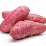 Phương pháp ủ chua khoai lang làm thức ăn cho gia súc